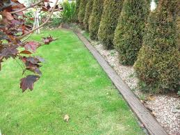 16 adorable landscape timber edging ideas landscaping ideas