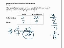 6th grade percentage word problems wholles