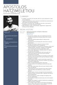 Sample Resume Executive Summary by Business Development Resume Samples Visualcv Resume Samples Database