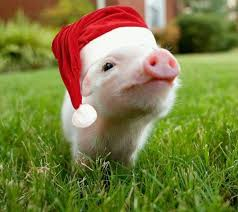 christmas pig thanks to all our customers matrix precision parts