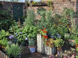 stunning low budget container gardens hgtv