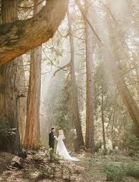 wedding in the wedding pictures in the woods 100 images in a wedding dress in