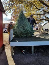 Helms Christmas Tree Farm - doby christmas tree farm home facebook