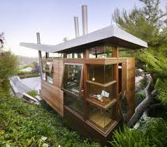 tree in house eccentric elevated los angeles hill home