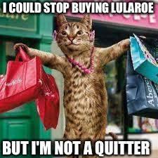 Shopping Meme - cat shopping memes imgflip
