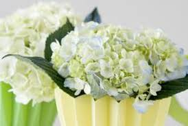 How To Revive Flowers In A Vase How To Boil Water To Revive Cut Hydrangeas Home Guides Sf Gate