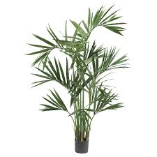 six foot silk kentia palm tree free shipping today overstock