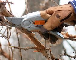 how to sharpen u0026 clean garden tools garden tool upkeep
