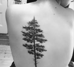 photos of mystical pine tree tattoos