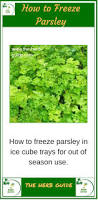 Join Our Facebook Page Freezing Parsley