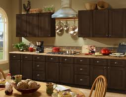home decorators collection kitchen cabinets remodel interior