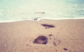 stunning footprints hd wallpaper 2560x1600 15551