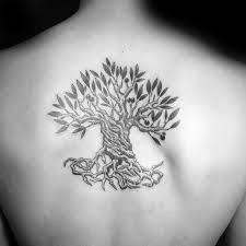 30 olive tree designs for olea europaea ink ideas