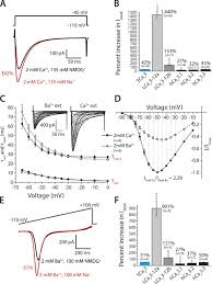 evolutionary insights into t type ca2 channel structure function