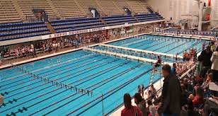 the 10 best collegiate competition swimming pools college ranker