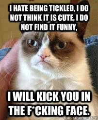 Tickled Memes - i hate being tickled memes quickmeme