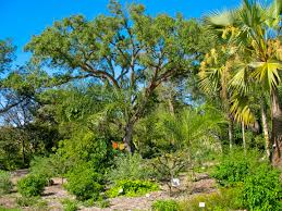 Map Of Amelia Island Florida by Gardens In Florida Florida Hikes