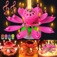 lotus birthday candle birthday candle decoration lotus flower magic blossom