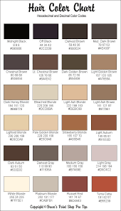 best 25 skin color chart ideas on pinterest makeup guide make