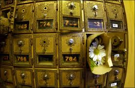 mail flowers student mail boxes with friday flowers