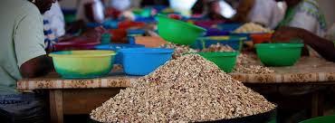 tecomah cuisine aïssata diakité developing the food sector by transforming