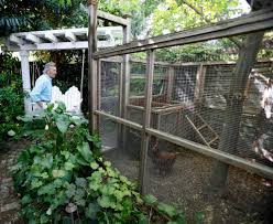 Backyard Chicken Run by Chickencoop1w