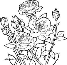 coloring pages with roses the coloring pages coloring pages roses and hearts printable rose
