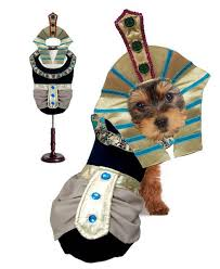 king tut dog costume egyptian halloween costumes for dogs