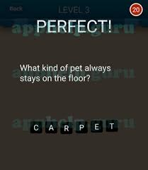 hi guess the riddle what of pet always stay on the floor