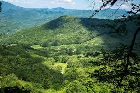 appalachian trail roan mountain highlands to roan mountain tn