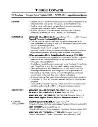 Profile Examples Resume by Examples Of Profile Statements For Resumes