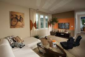 Contemporary Living Room Design Ideas  Pictures Zillow Digs - Contemporary living rooms designs
