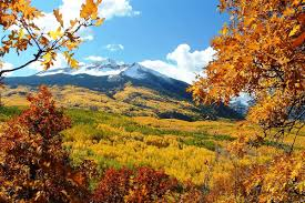 New York State Fall Foliage Map by 11 Best Places To See Fall Colors Nbc News