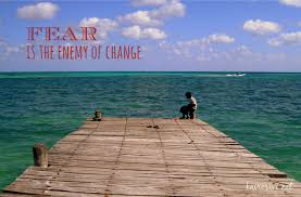 quotes about life s hurdles 12 insightful quotes to fight fear and ignite change holly scherer
