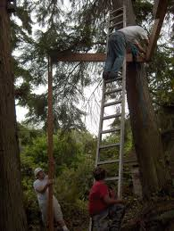 simple tips to build a solid tree house house and gardening addicts