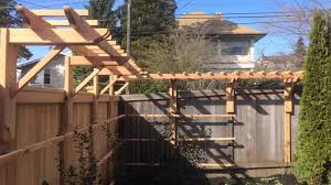 a cedar garden trellis for espalier camellia youtube