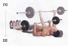 Bench Press Hypertrophy Can The Floor Press Replace The Bench Press For Chest Workout