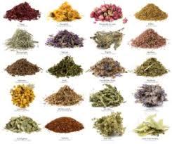herb chart herbal chart