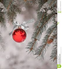 ornament hanging from tree outdoors stock photo image