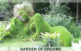 beautiful vegetable gardens decorating clear