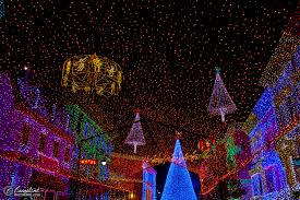 photo osborne family spectacle of lights at walt disney world