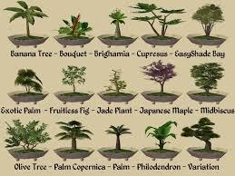 mod the sims 15 bonsai