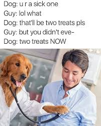 Dog Doctor Meme - trending current events