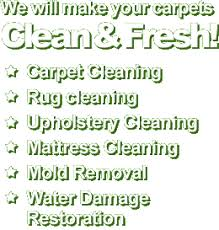 sofa cleaning san jose carpet cleaning san jose pros 408 658 0007 rug upholstery sofa
