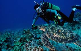 get your advanced open water dive certification on guam u2013 the guam