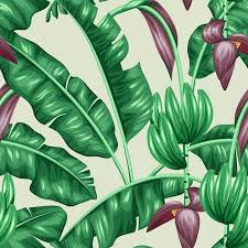 Foliage Flower - seamless pattern with banana leaves decorative image of tropical