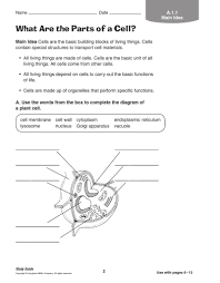 100 cells and organelles worksheet the cell worksheet