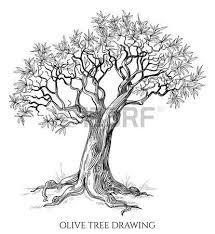 the 25 best olive tree tattoos ideas on