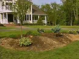 reducing the size of a lawn diy