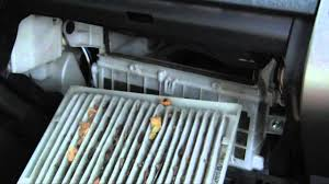 how to change a prius cabin air filter in 5 minutes taking